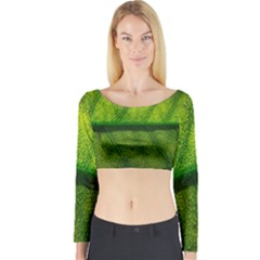Leaf Nature Green The Leaves Long Sleeve Crop Top