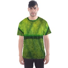 Leaf Nature Green The Leaves Men s Sports Mesh Tee