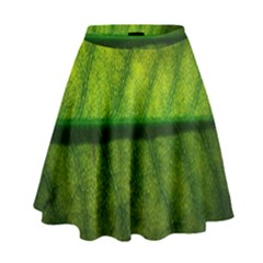 Leaf Nature Green The Leaves High Waist Skirt