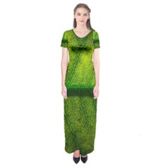 Leaf Nature Green The Leaves Short Sleeve Maxi Dress