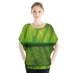 Leaf Nature Green The Leaves Blouse
