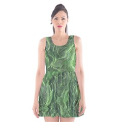 Geological Surface Background Scoop Neck Skater Dress
