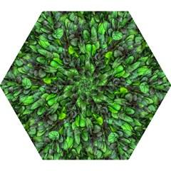 The Leaves Plants Hwalyeob Nature Mini Folding Umbrellas by Nexatart