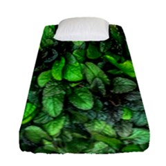 The Leaves Plants Hwalyeob Nature Fitted Sheet (single Size)