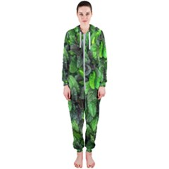 The Leaves Plants Hwalyeob Nature Hooded Jumpsuit (ladies)