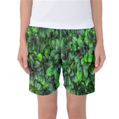 The Leaves Plants Hwalyeob Nature Women s Basketball Shorts