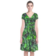 The Leaves Plants Hwalyeob Nature Short Sleeve Front Wrap Dress