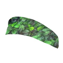 The Leaves Plants Hwalyeob Nature Stretchable Headband
