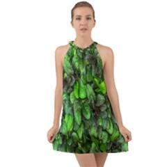 The Leaves Plants Hwalyeob Nature Halter Tie Back Chiffon Dress