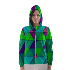 Background Geometric Triangle Hooded Wind Breaker (women)