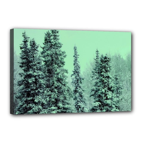 Winter Trees Canvas 18  X 12  by vintage2030