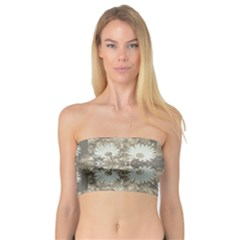 Vintage Daisy Floral Pattern Bandeau Top by dflcprints