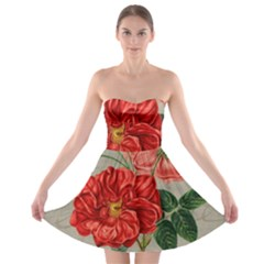 Flower Floral Background Red Rose Strapless Bra Top Dress by Nexatart