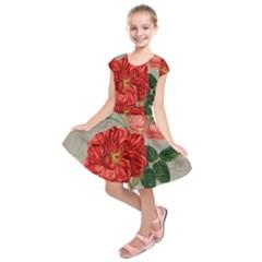 Flower Floral Background Red Rose Kids  Short Sleeve Dress