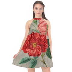 Flower Floral Background Red Rose Halter Neckline Chiffon Dress