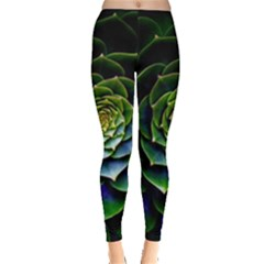 Nature Desktop Flora Color Pattern Leggings
