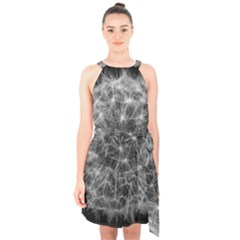 Dandelion Fibonacci Abstract Flower Halter Collar Waist Tie Chiffon Dress
