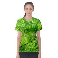 Green Wood The Leaves Twig Leaf Texture Women s Sport Mesh Tee