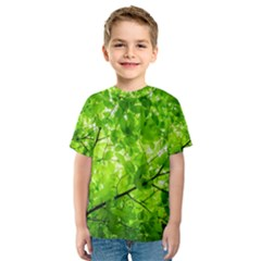 Green Wood The Leaves Twig Leaf Texture Kids  Sport Mesh Tee