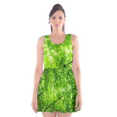 Green Wood The Leaves Twig Leaf Texture Scoop Neck Skater Dress