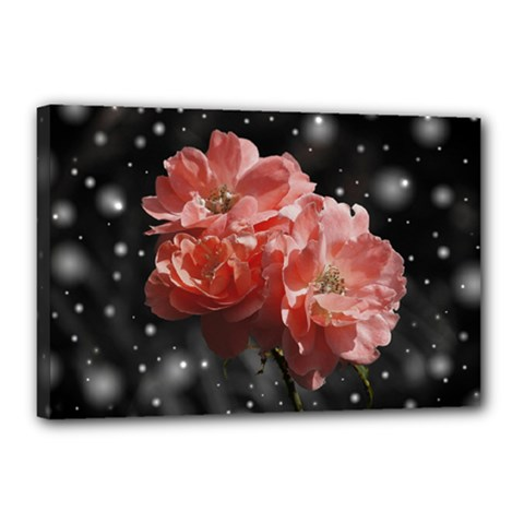 Rose 572757 1920 Canvas 18  X 12  by vintage2030