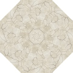 Background Wall Marble Cracks Folding Umbrellas