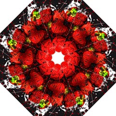 Strawberry Fruit Food Art Abstract Hook Handle Umbrellas (large)