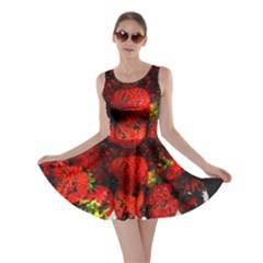 Strawberry Fruit Food Art Abstract Skater Dress