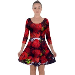 Strawberry Fruit Food Art Abstract Quarter Sleeve Skater Dress