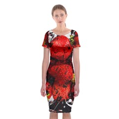 Strawberry Fruit Food Art Abstract Classic Short Sleeve Midi Dress