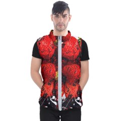 Strawberry Fruit Food Art Abstract Men s Puffer Vest