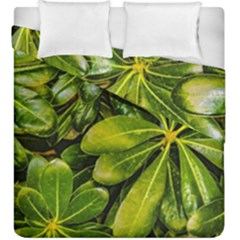 Top View Leaves Duvet Cover Double Side (king Size) by dflcprints