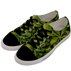 Top View Leaves Men s Low Top Canvas Sneakers by dflcprints