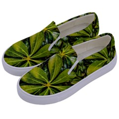 Top View Leaves Kids  Canvas Slip Ons by dflcprints