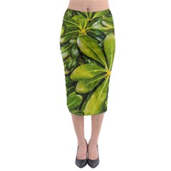 Top View Leaves Midi Pencil Skirt by dflcprints