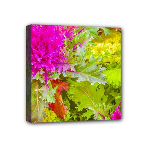 Colored Plants Photo Mini Canvas 4  X 4  by dflcprints