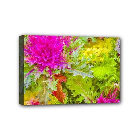 Colored Plants Photo Mini Canvas 6  X 4  by dflcprints