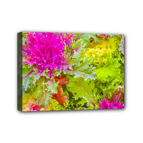 Colored Plants Photo Mini Canvas 7  X 5  by dflcprints