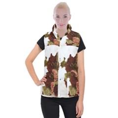 Shabby 1814373 960 720 Women s Button Up Puffer Vest