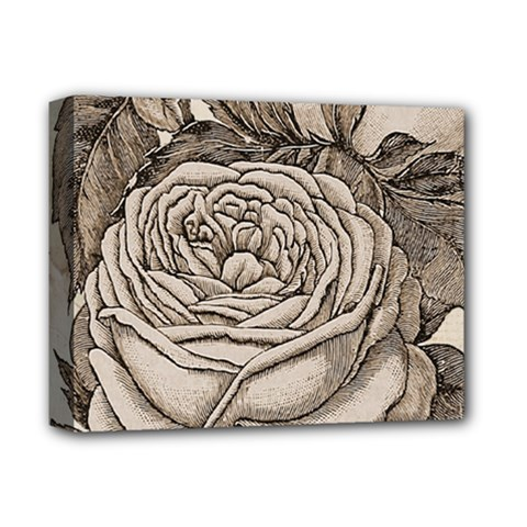 Flowers 1776630 1920 Deluxe Canvas 14  X 11  by vintage2030