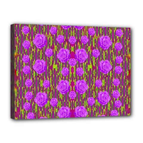 Roses Dancing On A Tulip Field Of Festive Colors Canvas 16  X 12  by pepitasart