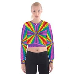 Rainbow Hearts 3d Depth Radiating Cropped Sweatshirt