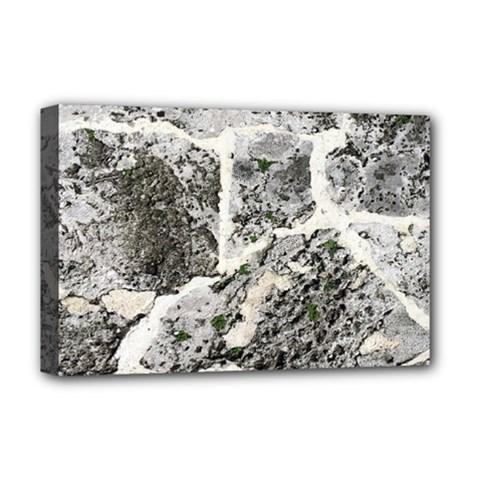Coquina Shell Limestone Rocks Deluxe Canvas 18  X 12