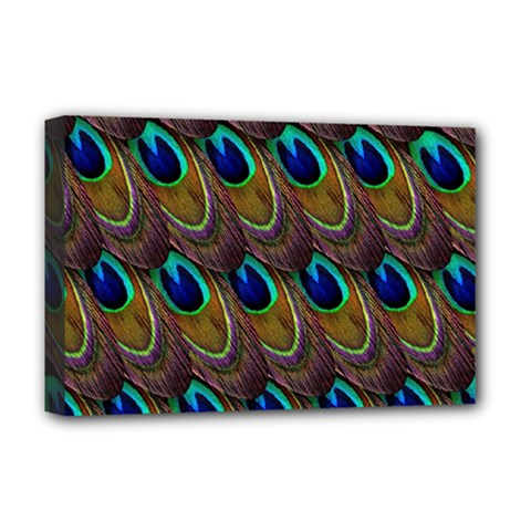 Peacock Feathers Bird Plumage Deluxe Canvas 18  X 12