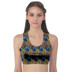 Peacock Feathers Bird Plumage Sports Bra