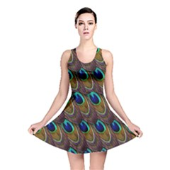 Peacock Feathers Bird Plumage Reversible Skater Dress