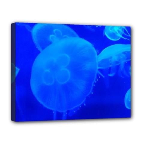 Blue Jellyfish 1 Canvas 14  X 11  by trendistuff