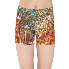 Fire Coral 1 Kids Sports Shorts