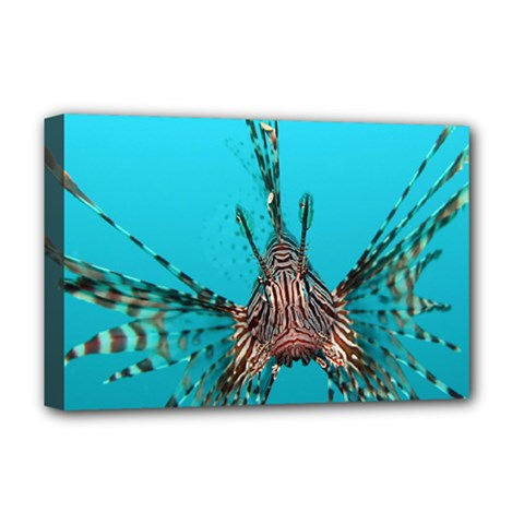 Lionfish 2 Deluxe Canvas 18  X 12   by trendistuff