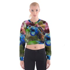 Mandarinfish 1 Cropped Sweatshirt